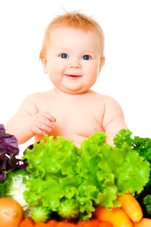 Curso Online de Alimentación durante el primer año de vida