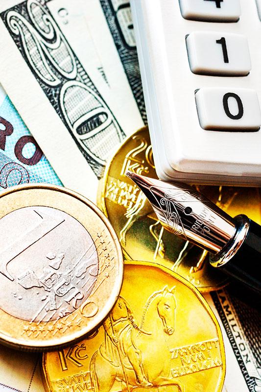 Curso Online Gestiona con éxito tu dinero