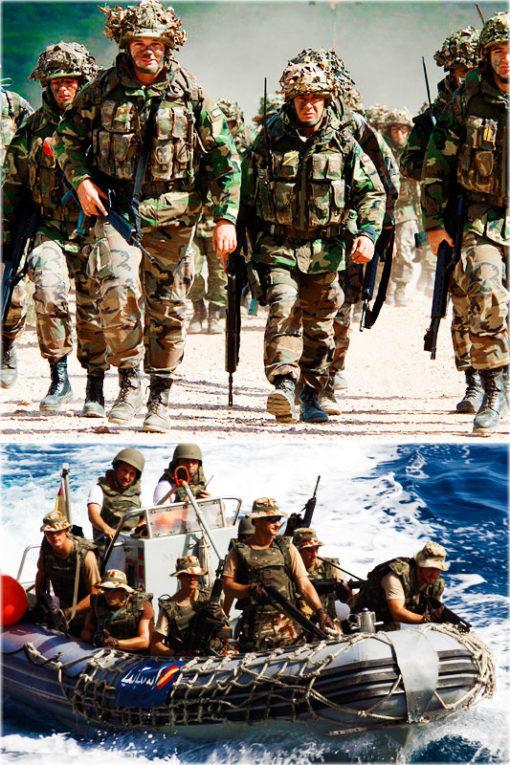 Curso online de preparación de psicotécnicos de tropa y marinería