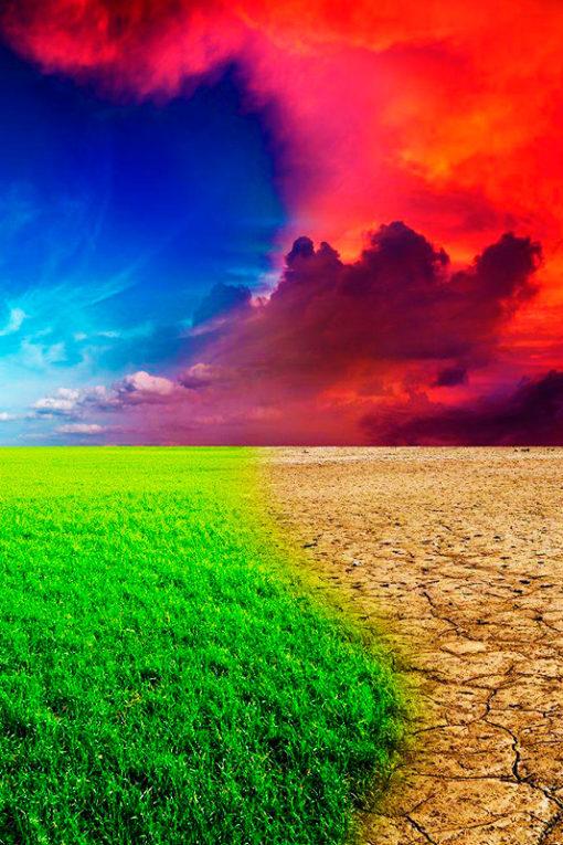 Curso Online de Cambio Climático Y Desarrollo Sostenible