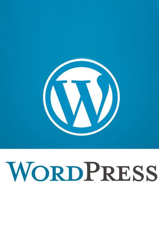 Curso Online de WordPress Avanzado