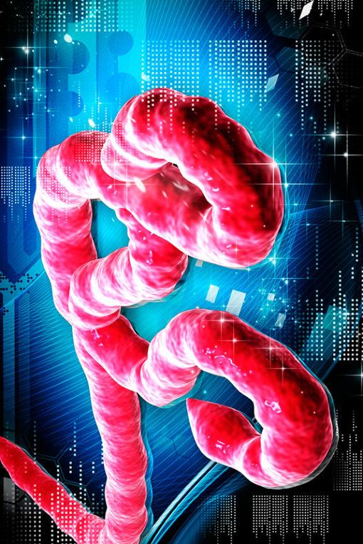 Curso Online de Epidemiología