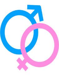 Curso Online de Sexualidad y Reproducción