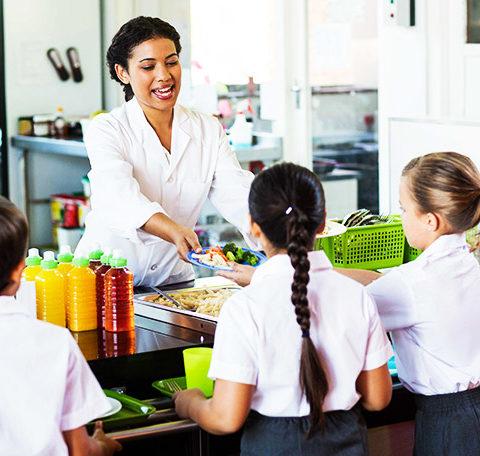 Grupo ilabora formaci n cursos online homologados for Monitor comedor escolar