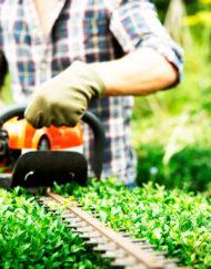 Prevención de Riesgos Laborales para el Sector de la Jardinería