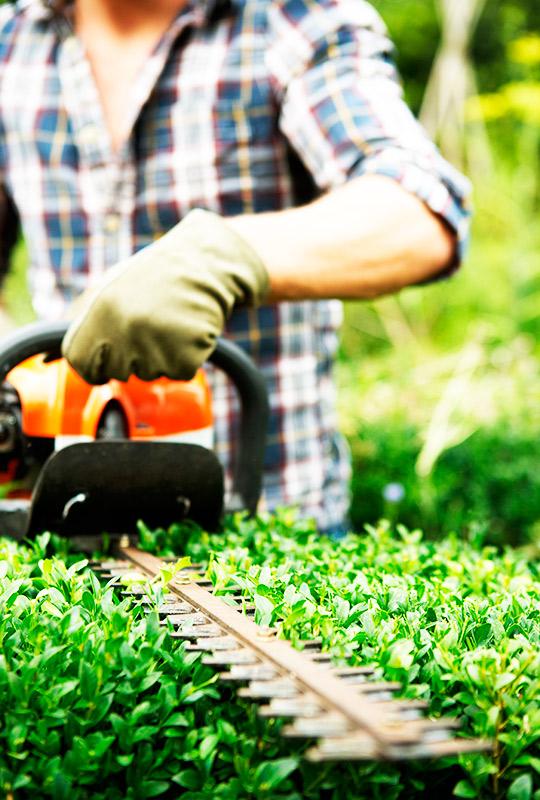 Curso Online de Prevención de Riesgos Laborales para el Sector de la Jardinería